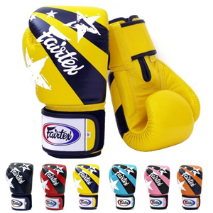 Fairtex Muay Thai Boxing Gloves BGV1